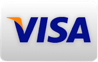 Pay Using a Visa Card.
